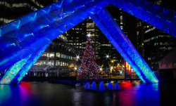 Christmastree_vancouver